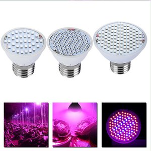 YHINT indoor plants LED grow lights 3W led lights 10led grow bulbs for seeding,RED & BLUE light indoor gardening grow light 5730