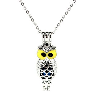 Wholesale Silver Enamel Owl Animal Essential Oil Diffuser Locket Women Aromatherapy Beads Pearl Oyster Cage Necklace Pendant Boutique gift
