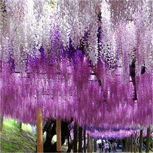 Wholesale 3 Feet Romantic Artificial Flowers Simulation Wisteria Vine Silk Flower Vine Garland Craft Ornament For Wedding Party Decorations