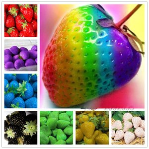 Wholesale 200 Strawberry Seeds Indoor Plants Sementes Giant Climbing Sweet Fruit For Home Garden Bonsai Potted Plants Gift For Kid