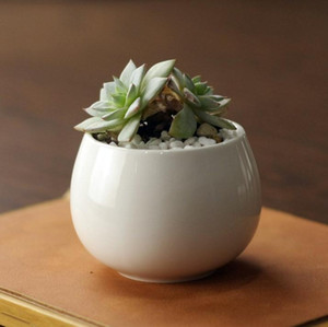 new succulents pots Decorative fashion Simple white mini flower pots planters succulent plant potted on the desk SN1874