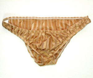 Sexy Mens Low Rise Bikini Panties G3188 Front Pouch Moderate Back Stripes C-thru fabric mens underwear