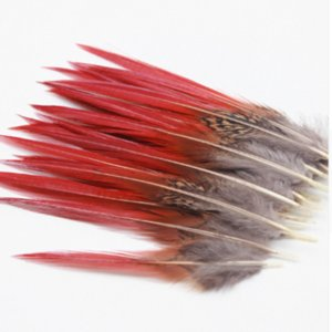 100pcs 4-5.5inch Beautiful pheasant feathers red sword rare feathers bulk feather fly fishing tying accessories material