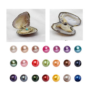 MIX 25 COLORS Freshwater Round Pearl with Oyster Shell 6-7mm Pearls in Oyster single, Pearls Oysters DIY Jewelry making