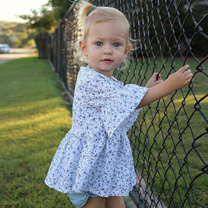 Wholesale Girls Dress Ins Summer Floral Printed Flare Sleeve Cotton Dresses Beach Skirt Baby Princess Skirts Kids Clothing Children Y2