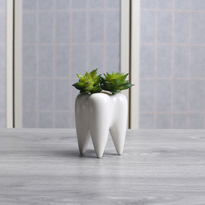 Wholesale 1 Tooth Shape White Ceramic Flower Pot Modern Design Planter Teeth Model Mini Desktop Pot Creative Gift