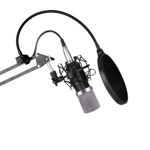 Wholesale Microphone bm800 offer set network K song KTV professional condenser microphone for mobile phone computer recording host m