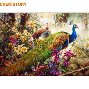 Wholesale CHENISTORY peacock DIY Painting By Numbers animal Acrylic Paint On Canvas family Hand Painted Figure Paintings Wall Artwork