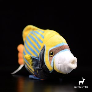 Kids Toys Plush Stuffed Animals Bis spine royal angelfish Doll Soft Tropical Fish Dolls Present Toy Shops
