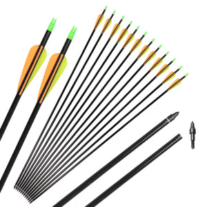 7.8mm Archery Fiberglass Arrows 32'' Spine 600 Screw-in Field Points Tips for Recurve Compound Bow Hunting Shooting