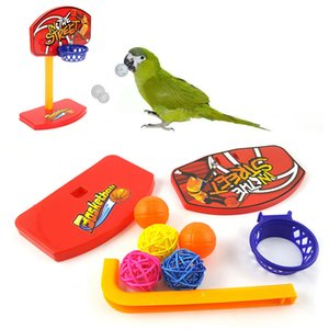 Wholesale 1set Pet Birds Chew Parakeet Bell Balls Parrot Toys Birdie Basketball Hoop Prop Pet Products intelligence development toys