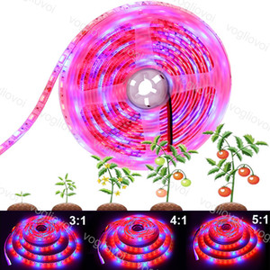 Grow Lights Full Spectrum LED Strip Lights 5M Roll 300 LEDs 5050 Chip Fitolampy Waterproof For Indoor Greenhouse Hydroponic Plant EUB