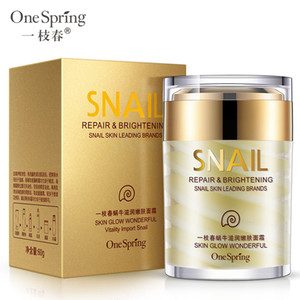 Wholesale One Spring High Quality Snail Facial Cream Deep Hydrating Face Cream Moisturizer Nourishing Repair Acne Treatment Anti Wrinkle