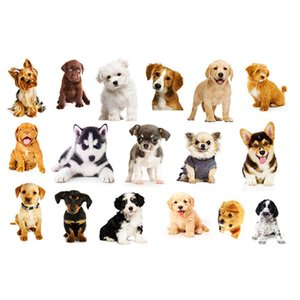 Wholesale Removable Puppy Wall Sticker Vinyl DIY Early Education Stickers Art Mural Decals for Kids Living Room Kindergarten Wallpaper