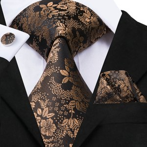 Wholesale Hi Tie Famous Brand Necktie Luxury Design Style Ties For Man Floral Pattern Jacquard Woven Necktie Set SN