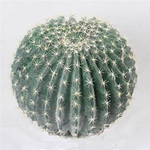 Large Artificial Realistic Cactus Cactus Ball Green Prickly Pears Craft Landscape for Home Garden Decoration