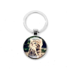 Wholesale Creative Cat Kitten Keychain for Women Men Art Photo Crystal Glass Dome Key Ring Bag Charm Key Chain Llaveros Birthday Gift