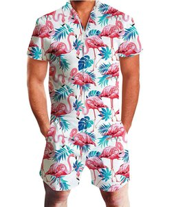 Wholesale men's summer short-sleeved jumpsuit Hawaii casual jumpsuit male fruit printed beach Beach Street clothes