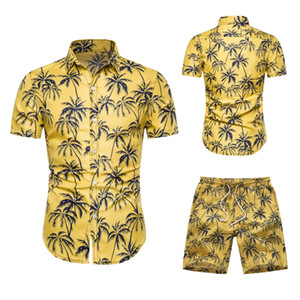 Wholesale Two Piece Set Men Hawaiian Print Short Sleeve T Shirt Cropped Top Shorts Men's Tracksuits New Causal Tops Short Trousers