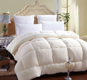 Wholesale Hot Style Quilt Super Soft Lamb Winter Quilt Thickened Warm Comforter Spring and Autumn Cotton Core Blanket Twin Full Queen King Sizes