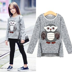 Wholesale Sweatshirt For Girls Kids Toddler Big Girls Pullover for Winter Autumn 2018 Clothes Cute Owl Warm Fleece Lined with Zipper T190917