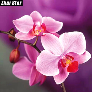 Wholesale 5d rhinestone resale online - Full Square Diamond D DIY Diamond Painting quot Beautiful orchid quot D Embroidery Cross Stitch Rhinestone Mosaic Painting Decor VIP
