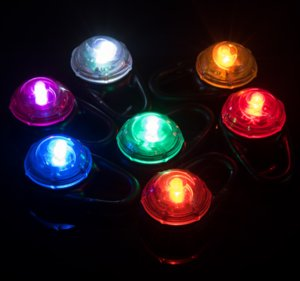 Wholesale LED pet glow pendant Cat dog tag Flash animal necklace Lights flicker and can be adjusted tag kinds of color