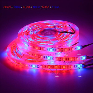Wholesale DC V LED Grow light Full Spectrum M LED Strip light Full Spectrum Grow Lights Plant Growth lamps For Greenhouse Hydroponic Plant Growing
