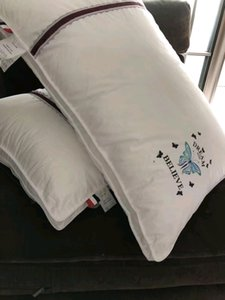 Wholesale two pieces per set hotel home White Pillows size 58x74cm,embroidery cotton fabric home hotel used and decroration four season use