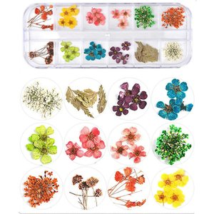 Wholesale Mix Dried Flowers Nail Decorations Jewelry Natural Floral Leaf Stickers D Nail Art Designs Polish Manicure Accessories