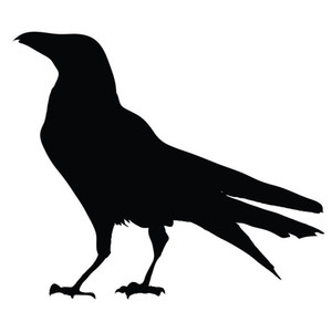 Wholesale 15 cm Bird Silhouette Vinyl Decal Raven Crow Birds Cute And Interesting Fashion Vinyl Car Wrap Car Stickers