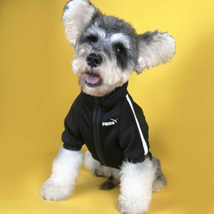 Dog clothes autumn tide brand Korean business words now boyfriend with Teddy schnauzer Bomei law fighting cat sweater coat