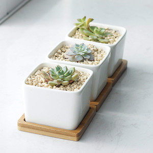 "Pack of 3 Succulent Planters Planter Pots 2.2"" White Ceramic Square Planters Green Plant Pots Cactus Planters with Bamboo Tray Vases on Sale"