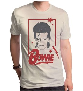 Hot Sale Fashion Official David Bowie Aladdin Sane Frame Photo Picture T Shirt S M L Xl 2xl Top Print T Shirts O Neck Short Slee