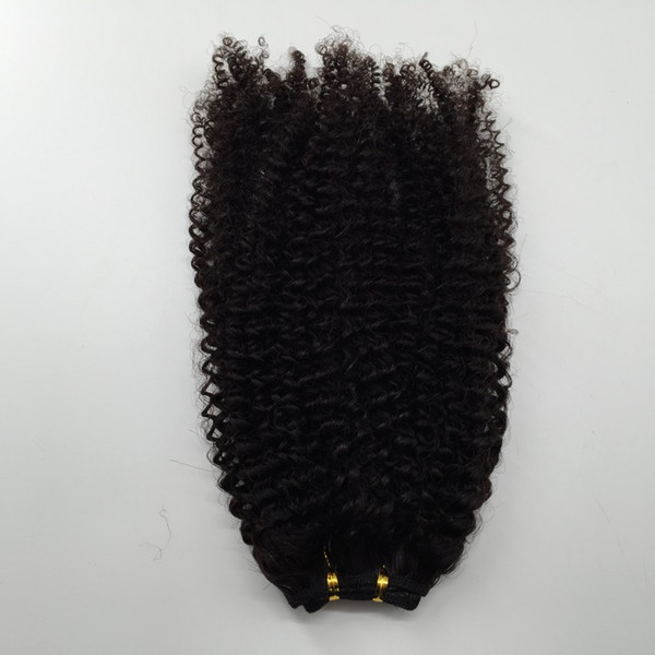 Cheap Peruvian Brazilian Hair Wefts Afro Kinky Curly Hair Weaves Human Hair Extension 2Bundles Lot Fast Free Shipping