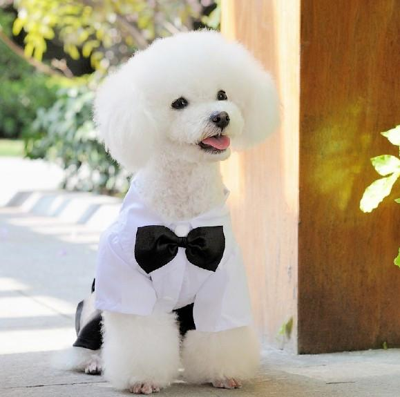 Wx01 White Black Dog Clothes Dogs Wedding Dresses Puppy Outfit Mascotas Perros Tuxedo Pet Jumpsuit Little Dog Clothing For Pets