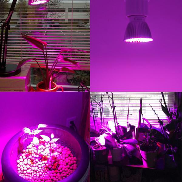 2019 Full Spectrum 4 5w 5w E27 E14 Gu10 Led Grow Light Red Blue White Led Growing Lamp For Hydroponics Flowers Plants Vegetables Led Spot Lights From