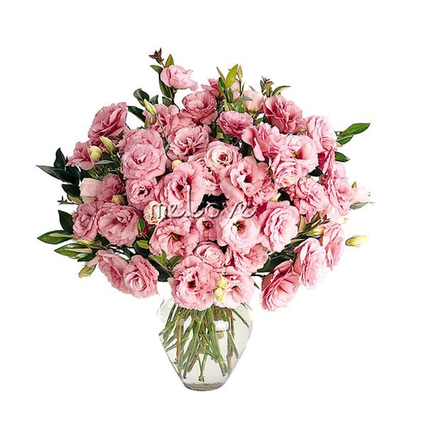 10 Semi Pellettati Eustoma Lisianthus Rose Fiore doppio rosa Amazing Cut Flower Perfetto per bordare il bordo, piantando in contenitori
