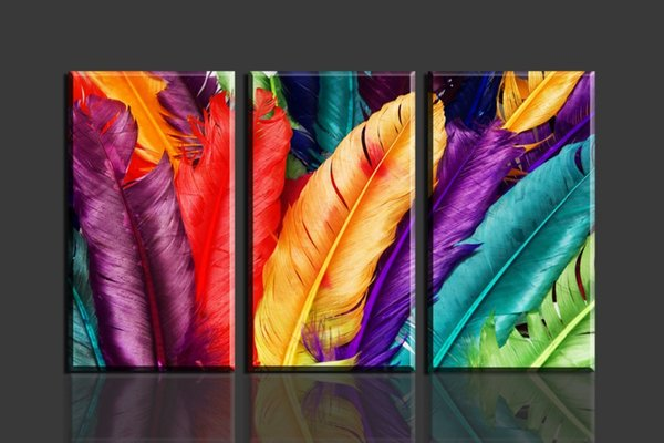 3 Panels/Set HD Fresh Look Colorful Feather Canvas Printing Modern Unframed Art Picture for Living Room Bedroom