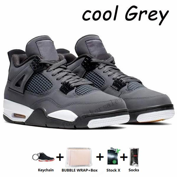 4s-Cool Gray