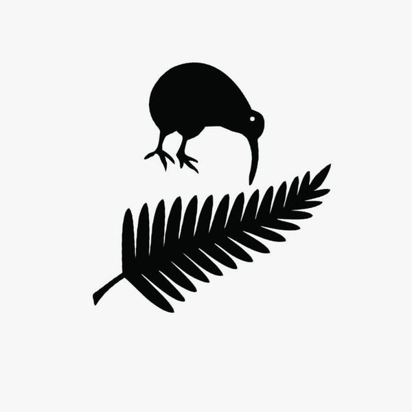 11.4 * 15 CM Kiwi Bird E Nova Zelândia Samambaia Vinil Adesivos de Carro Criativo Car Styling Decal adesivo adesivo de Cola Preto / Prata
