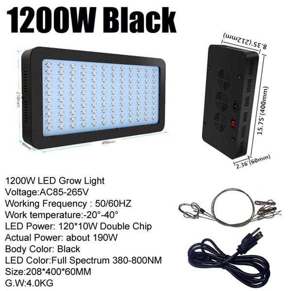 1200W (120 * 10W) Black Body