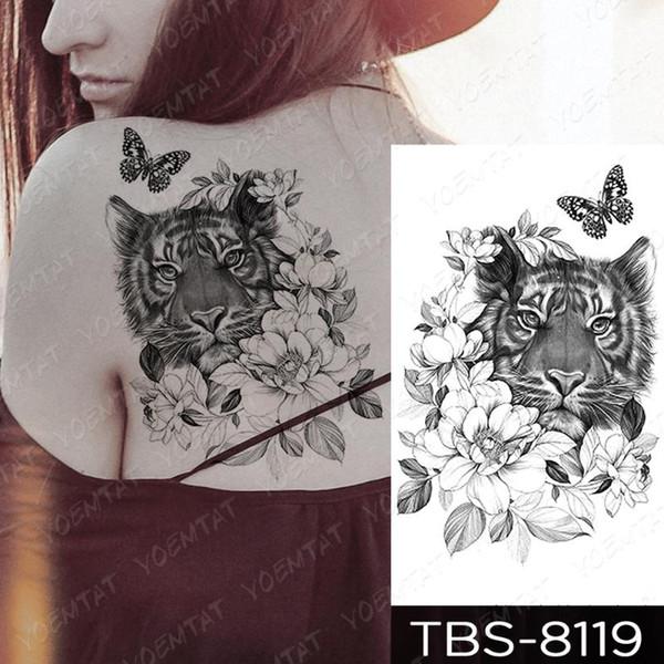 13-TBS8119