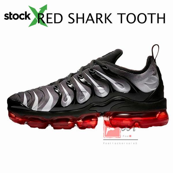 Dente di squalo rosso