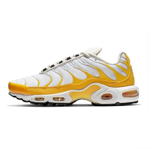22 weiß gelb