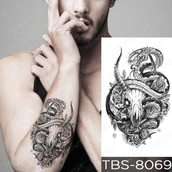 11-TBS8069