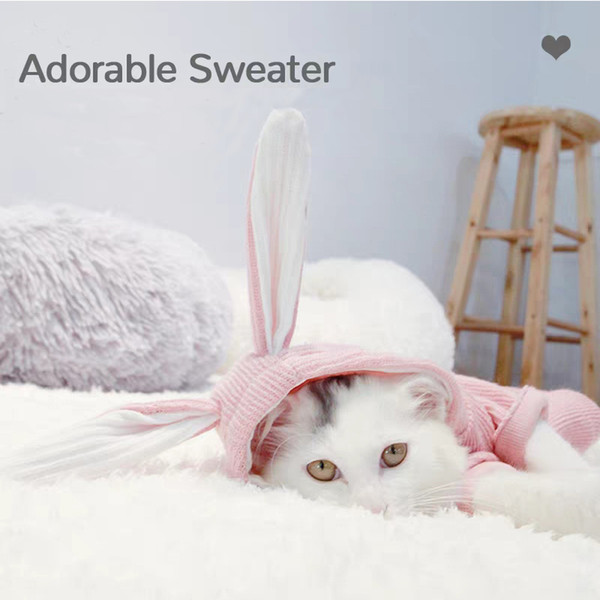 Cute Rabbit Ears Pet Cat Hoodie Spring Autumn Dog Cat Clothes Jumpsuits Two Feet Kitten Sweater