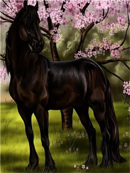 16x20'' Handsome Black Brown Horse Standing in The Park among the Flowers DIY Paint By Numbers Kits On Canvas Art Acrylic Oil Painting