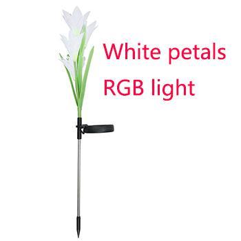Weiße Blütenblätter mit RGB-Licht