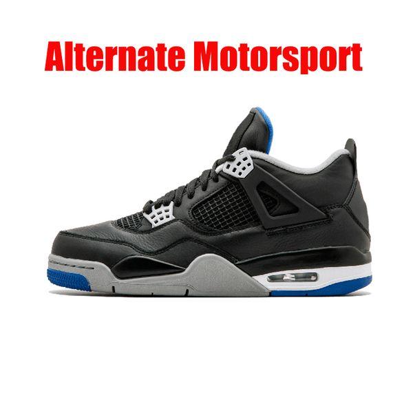 Alternativer Motorsport